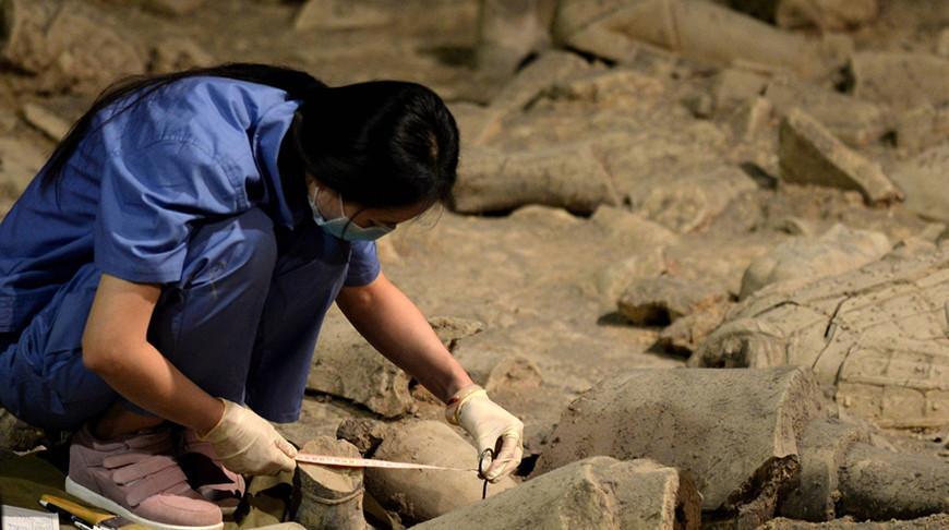 Древнейшую в Восточной Азии статуэтку обнаружили в Китае