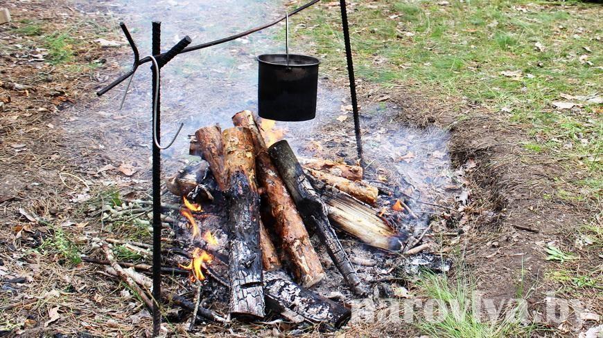 Огонь в лесу. Как не допустить беды?