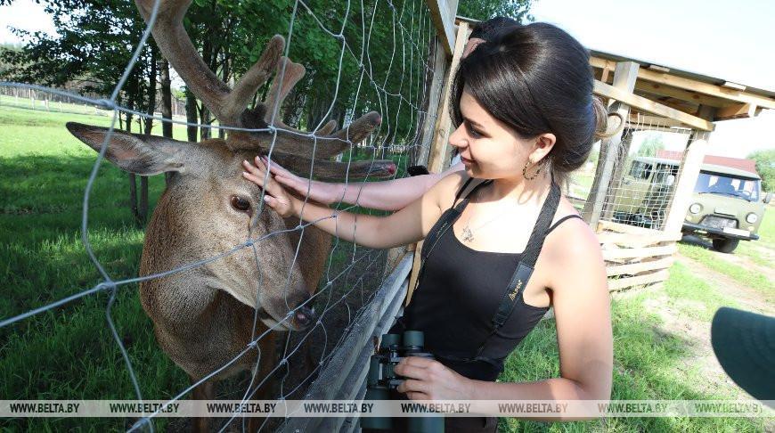 В сафари-парке Национального парка «Припятский» обитают около 300 животных