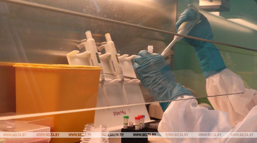 По миру распространяется шесть разновидностей коронавируса SARS-CoV — ученые