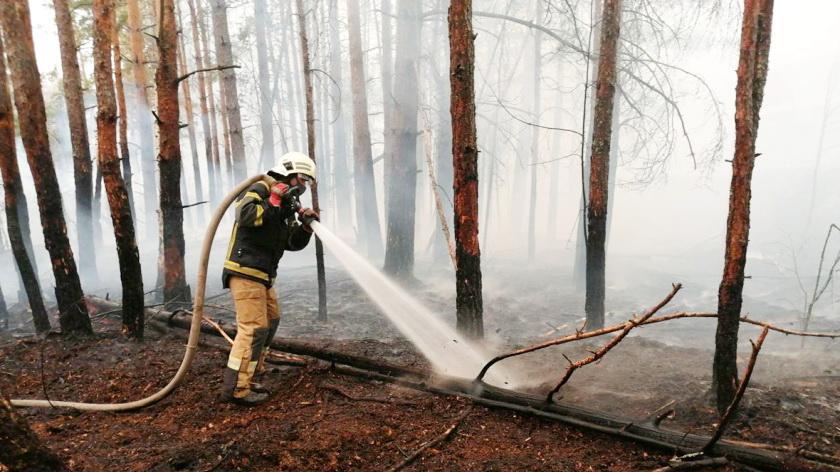 В украинской части Чернобыльской зоны снова пожар