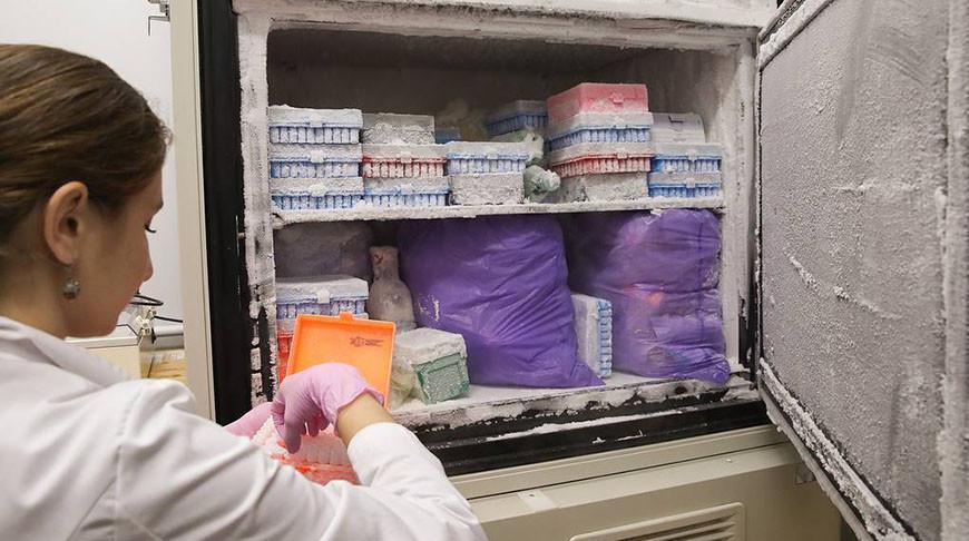 В России началось производство вакцины от коронавируса