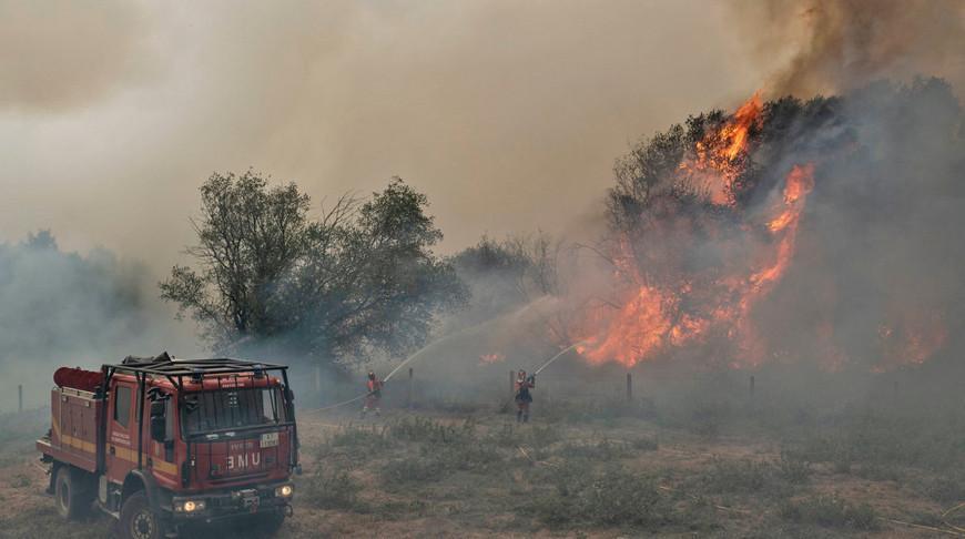 Пожары в Испании уничтожили почти 9 тыс. гектаров леса