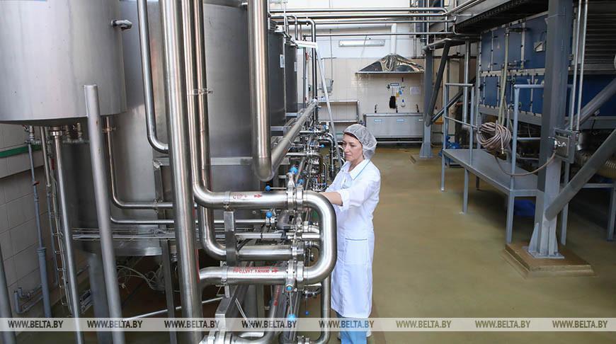 Предприятие «Мозырские молочные продукты» готовит масштабное переоснащение