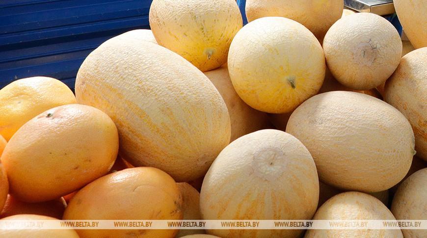Дыни с превышением нитратов и халву с плесенью обнаружили в торговой сети Гомельской области