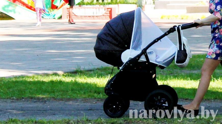 Речичанка продавала детскую коляску и чуть не лишилась 150 рублей