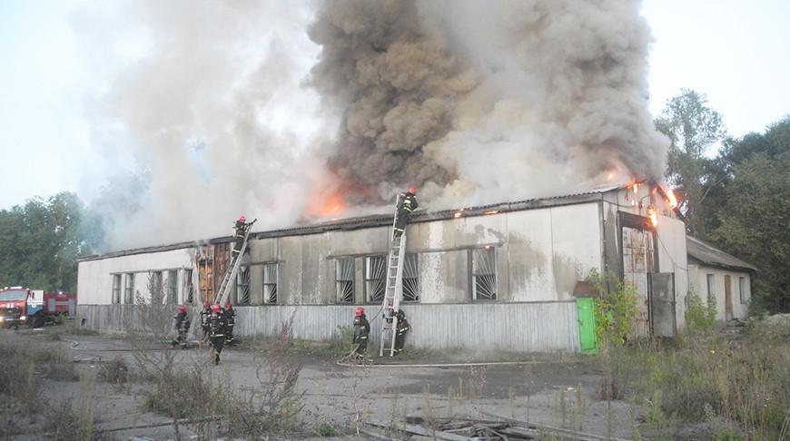 Видео. В Хойниках спасли от огня 25 т соломы