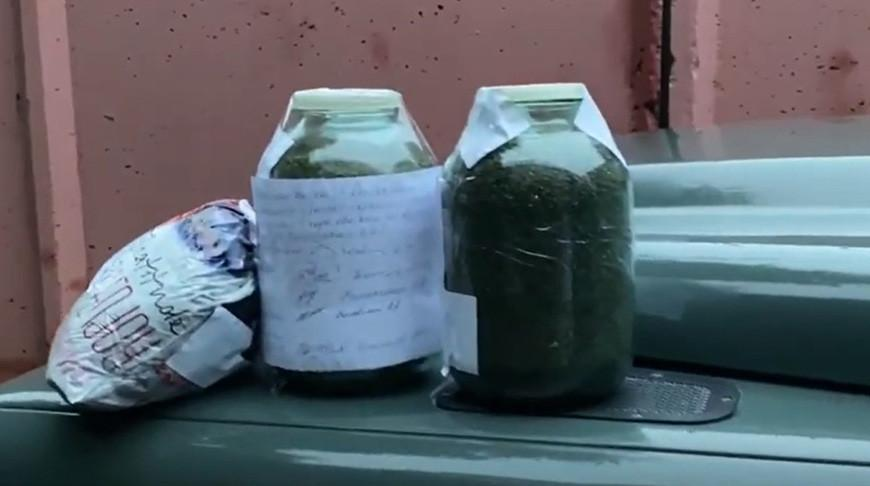 Видео. Сбытчиков марихуаны задержали в Гомеле