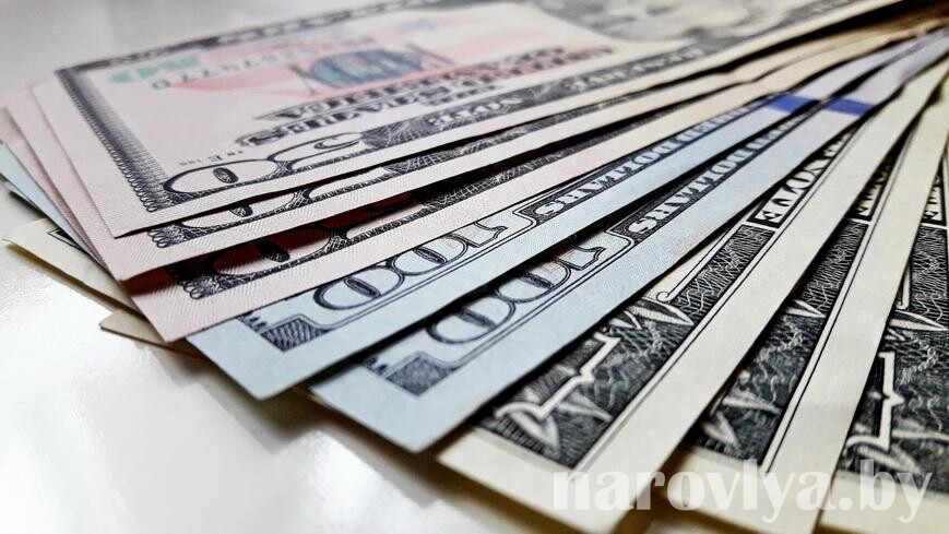 Гомельчанин обманом похитил у студентки из Туркменистана около $3 тыс.