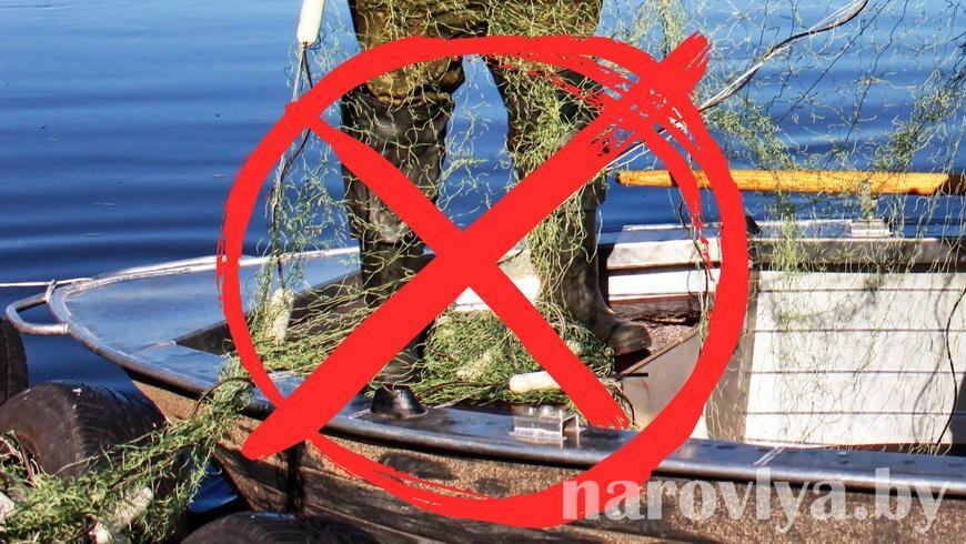 С 1 ноября запрещен лов сома и сига