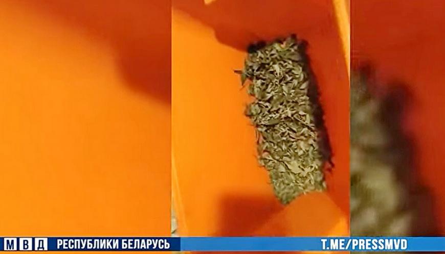 ВИДЕО. У минчанина нашли более 2 кг наркотиков