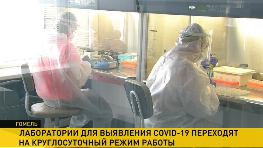 Тесты на COVID-19: лаборатории в Гомельской области переходят на круглосуточный режим работы