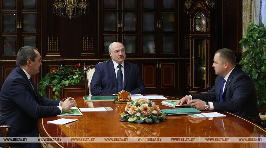 «Восстановили утраченное в бытность СССР» — Лукашенко оценил развитие лесного хозяйства в Беларуси