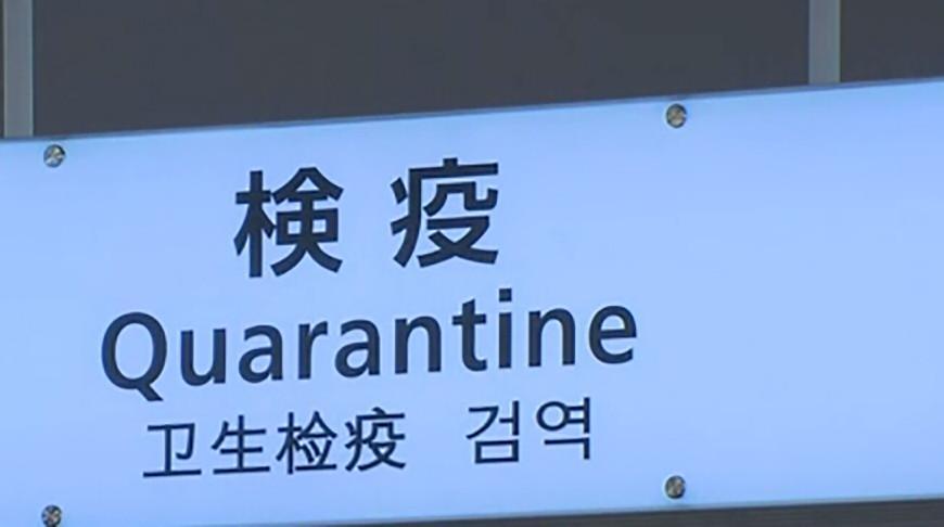 В Японии выявлен еще один новый штамм коронавируса