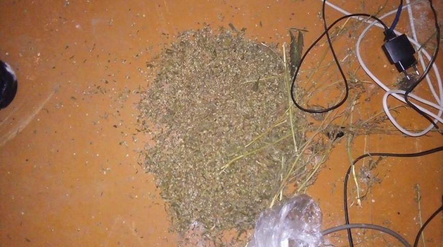 Житель Речицы хранил в доме отца почти 2 кг марихуаны