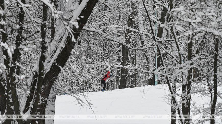 В Гомельской области проложено более 60 лыжных трасс почти на 80 км