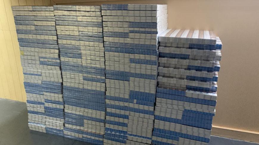 Почти 29 тыс. пачек сигарет изъяли в Гомеле