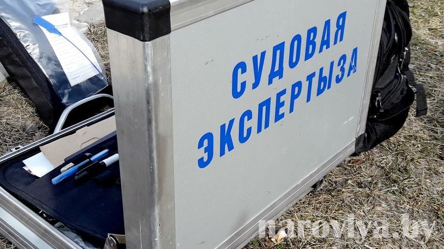 В Рогачевском районе нашли тела трех мужчин в поле