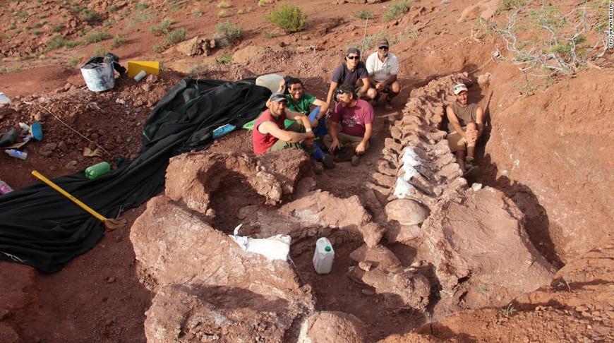 В Аргентине нашли останки динозавра, жившего 140 млн. лет назад