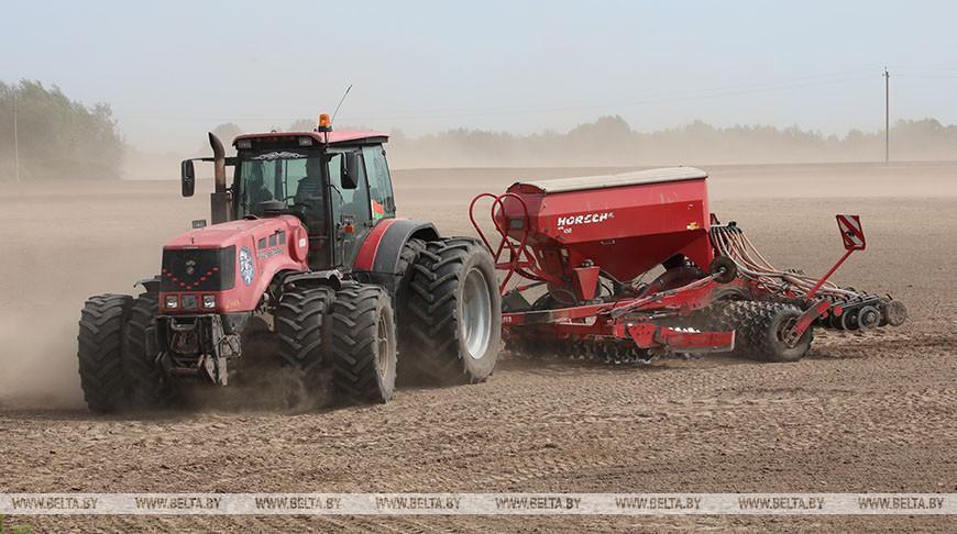 Более 20 тыс. га земель вовлечено в хозяйственный оборот в Гомельской области в 2020 году