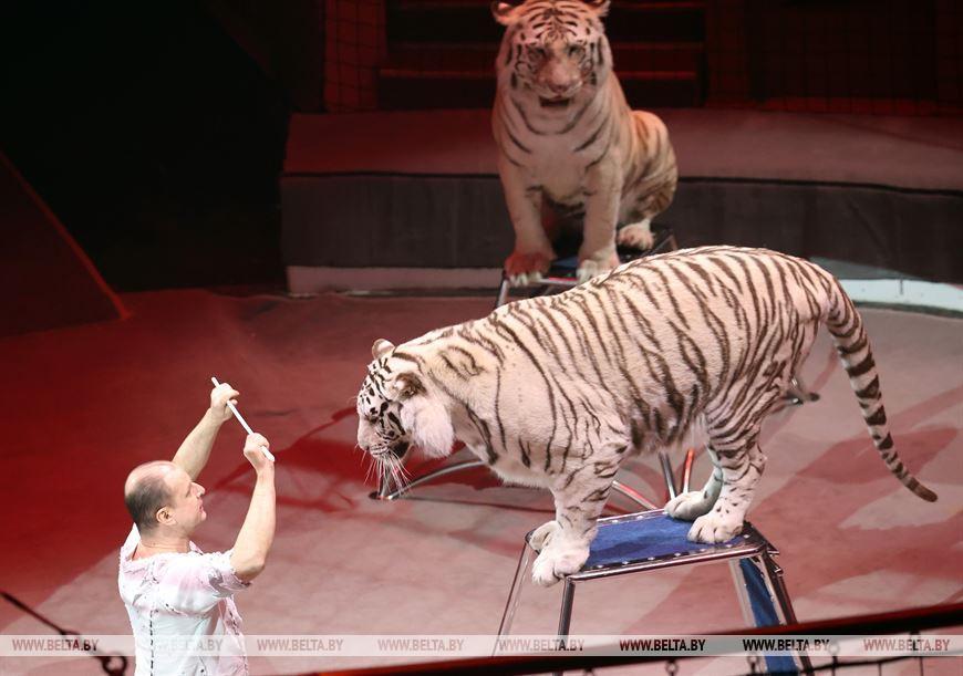 ФОТОФАКТ: В гомельском цирке представлена новая программа «Люди! Звери! Сенсация!»