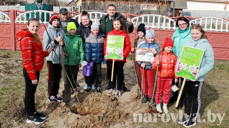 ФОТОФАКТ. В Наровле заложили рябиновую аллею у дома семейного типа в рамках «Недели леса-2021»