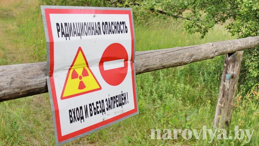 Постчернобыльская зона имеет свой потенциал для науки — мнение
