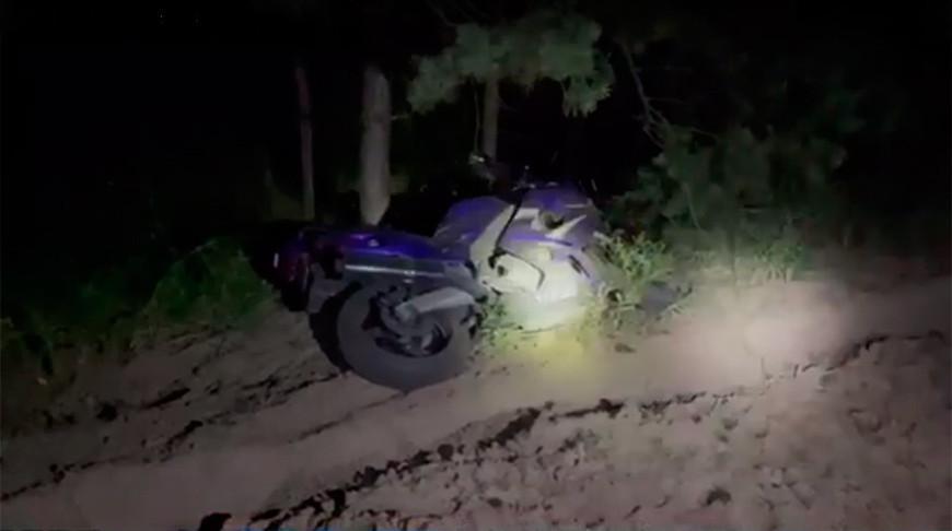 В Речицком районе мотоциклист столкнулся с лосем и погиб