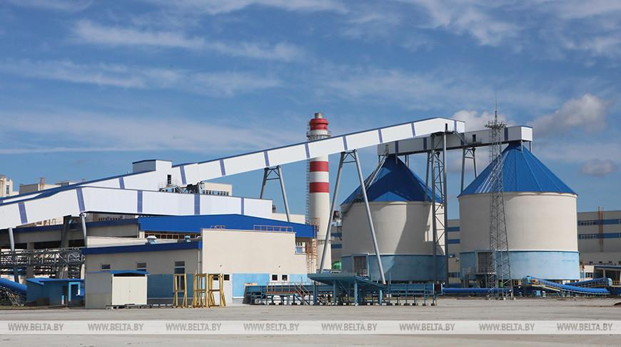 Лукашенко намерен посетить введенную в эксплуатацию картонную фабрику в Добруше