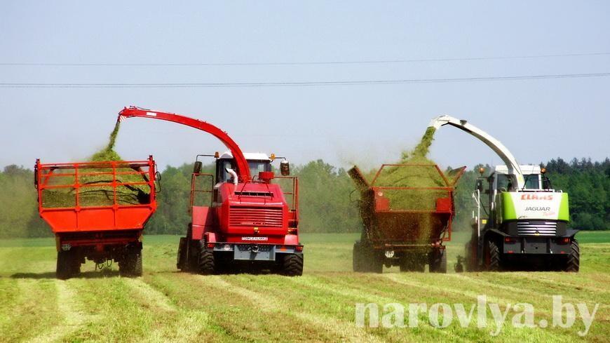 Аграрии Наровлянщины приступили к укосу трав