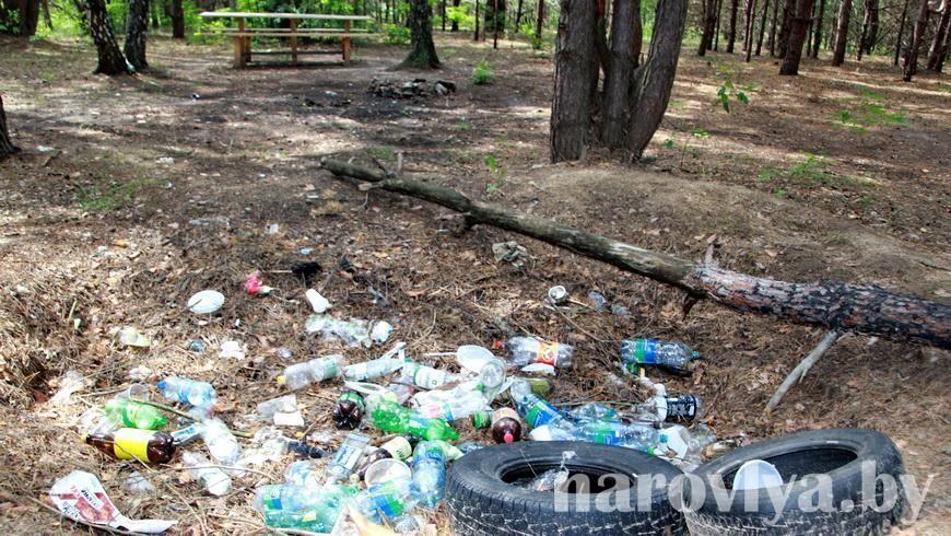 Мусор — угроза экологии Наровлянкого района