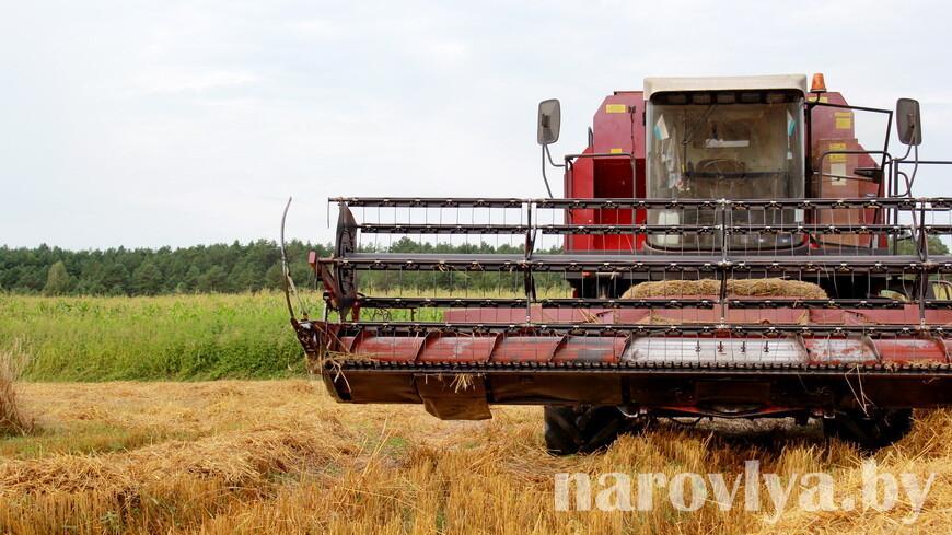 Профсоюзы АПК: слаженность и взаимопонимание — плюсы родственных экипажей на уборке зерновых